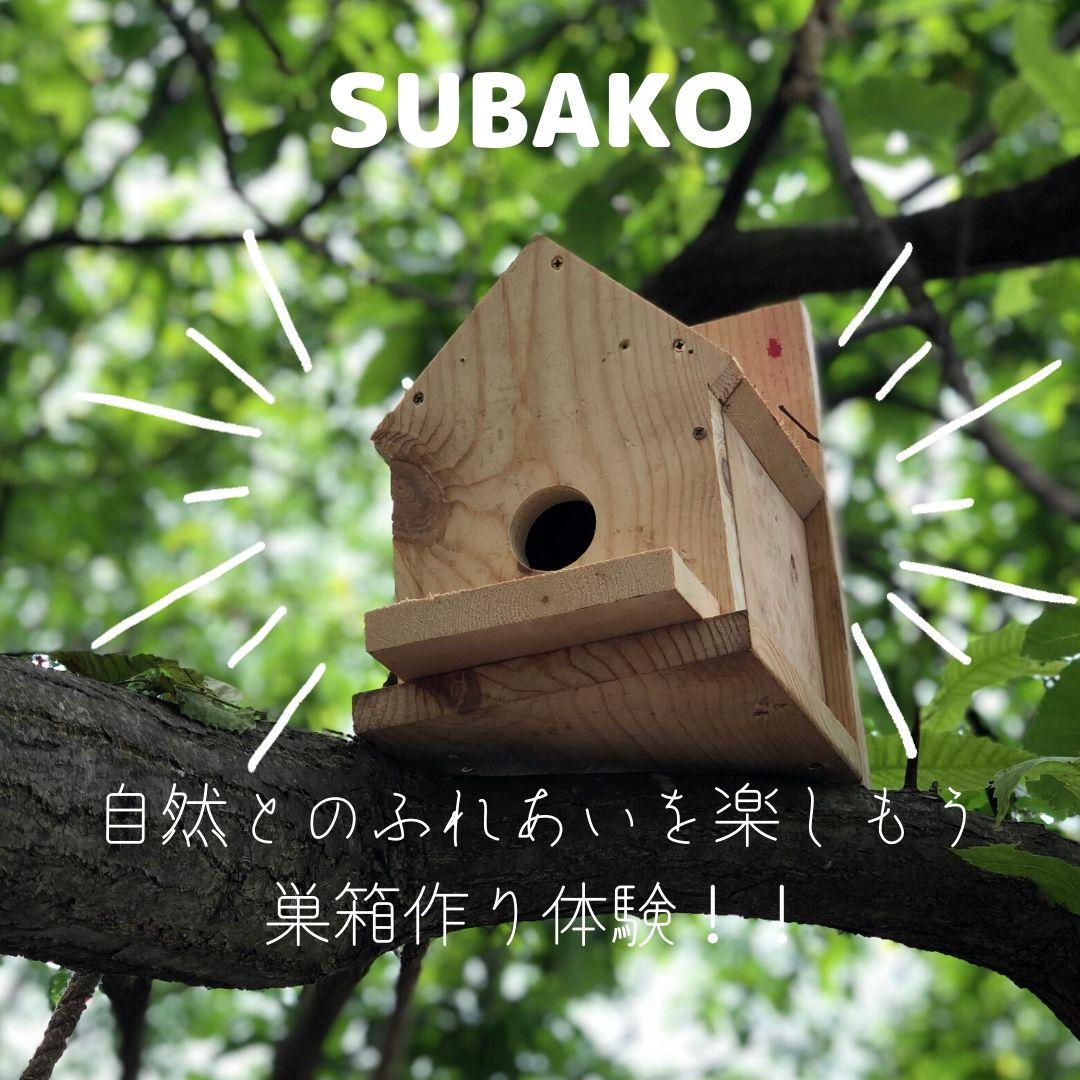 自然の中で巣箱を作ろう!ミコノス横浜保土ヶ谷自然体験